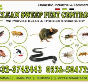 Clean Sweep Pest Control Islamabad
