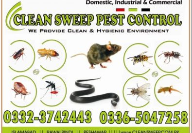 Clean Sweep Pest Con...