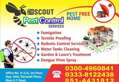 Scout Pest Control Islamabad