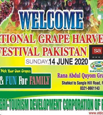 6th National Grape Harvest Festival 2020