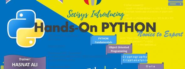 Hands-On Python Training (Novice to Expert)