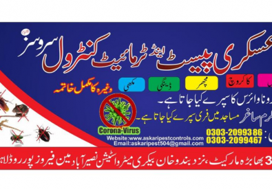 Askari Pest Control Services in Lahore