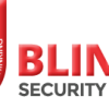 Blink Security Servi...