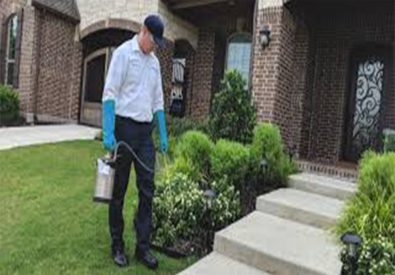 ECO Services in Karachi