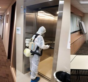 Pest Solution Disinfection Services in Karachi