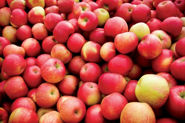 Apples Zero Calorie Foods for Weight Loss
