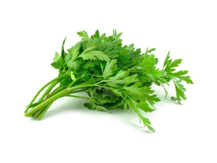 Celery Zero Calorie Foods for Weight Loss