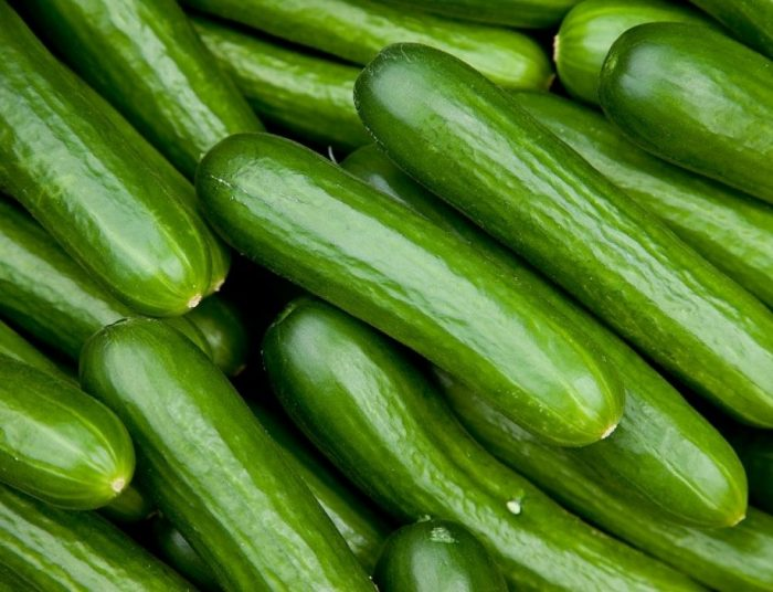 Cucumber Zero Calorie Foods for Weight Loss