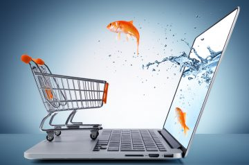 Top 6 E-Commerce Shopping Websites In Pakistan