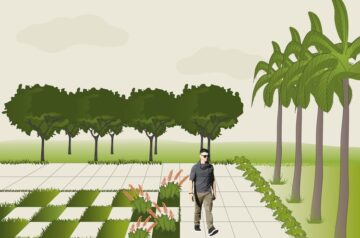 Landscaping Basics: 7 Elements to Consider in Landscape Design
